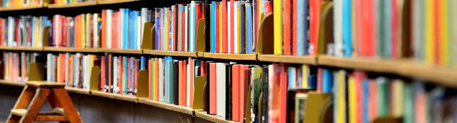 Photo of books on a library shelf